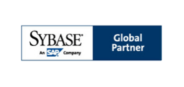 Sybase global partner